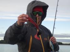 Ursuit Märketin iso huppu antaa hyvin suojaa pahaa aavistamattomalle kalastajalle.